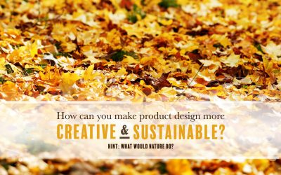How Can You Make Product Design More Creative AND More Sustainable?
