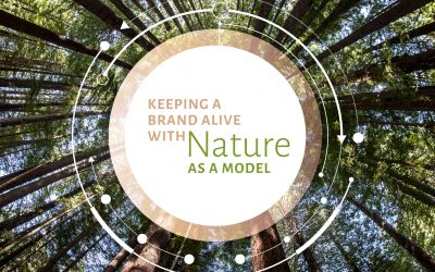 Keeping a Brand Alive With Nature as a Model