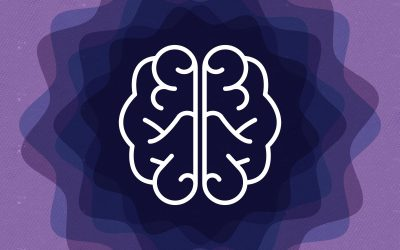 A Whole-Brain Approach to Building Stronger Brands